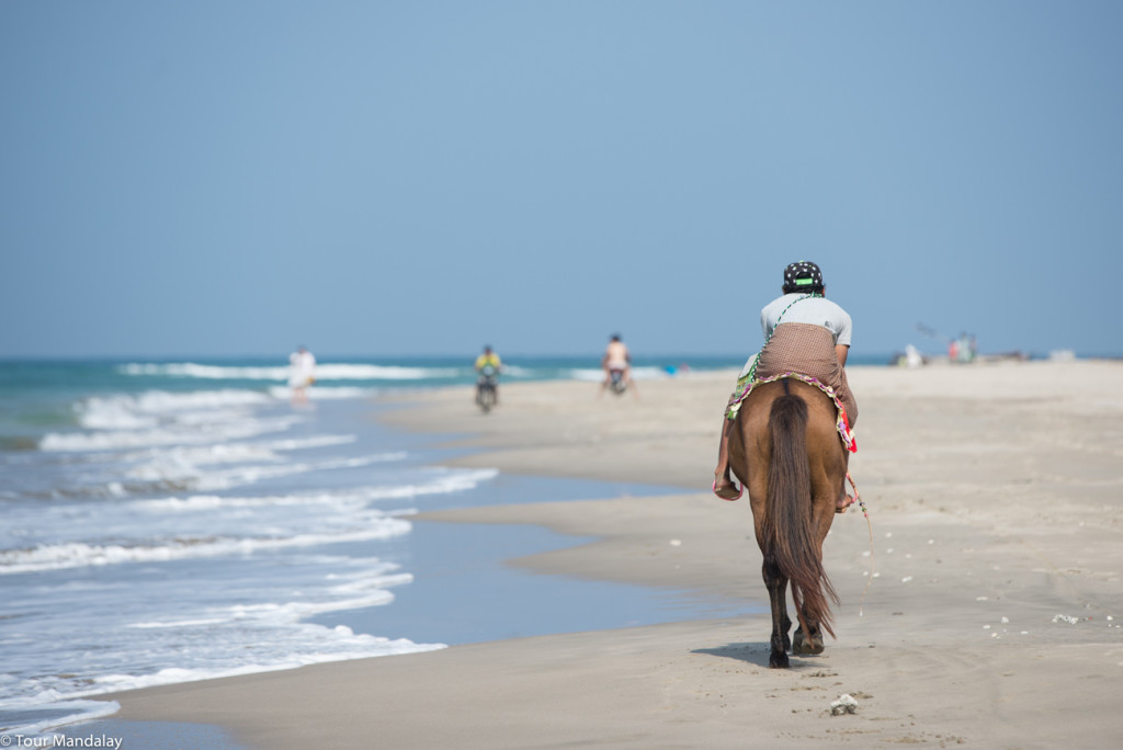 A horse walks down Ngwe Saung beach
