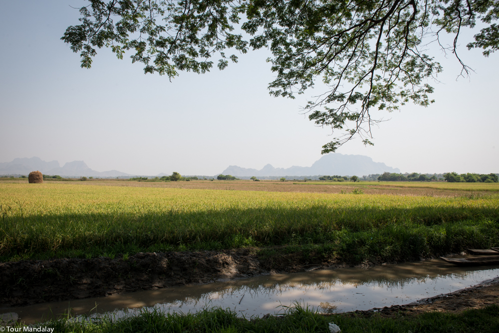 A view of the fields in Karen State