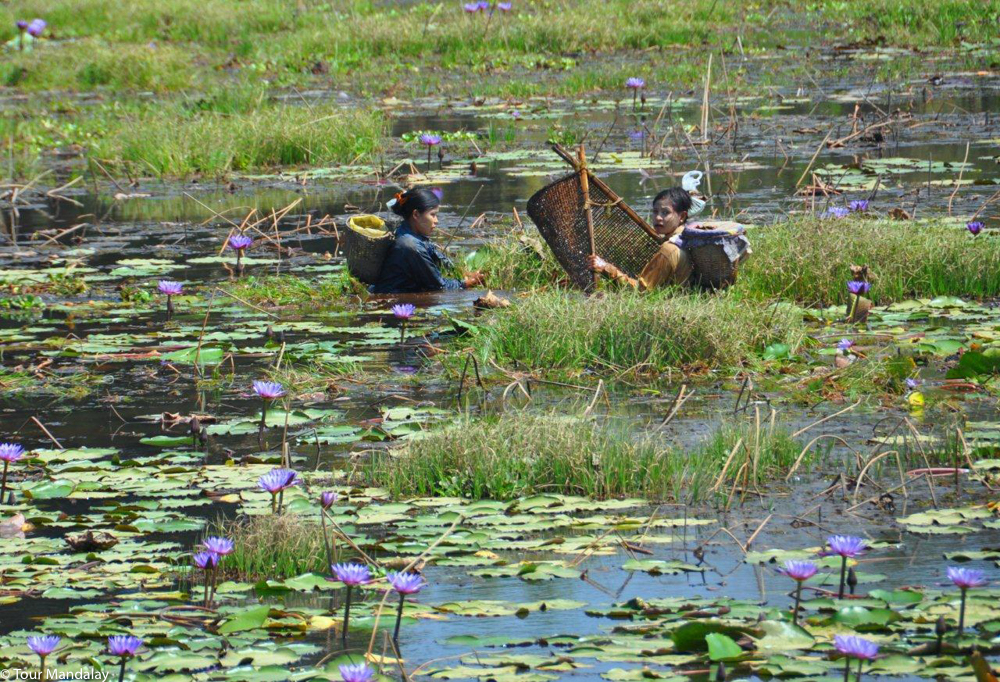 Women fishing in the pond