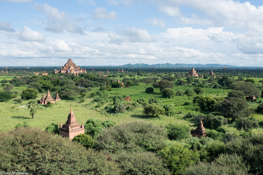 A green Bagan, as viewed in the month of October
