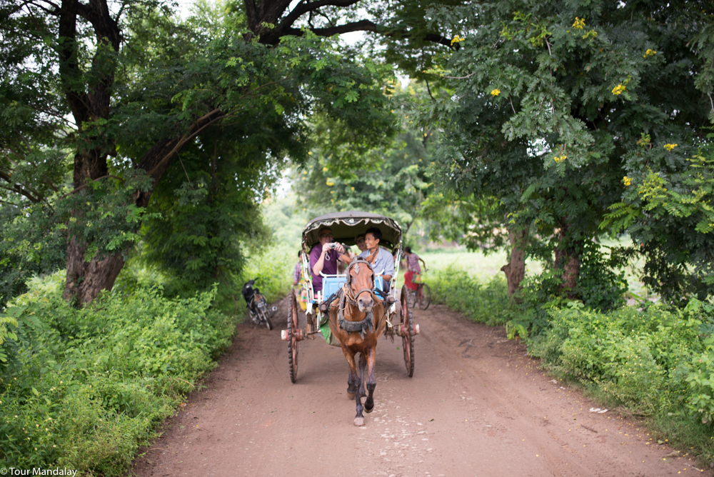 A bumpy, yet fun, horse ride tour around Ava's most famous attractions